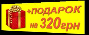 +Подарок красный 320