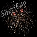 Фейерверк Frank Sinatra (версия от 18.06.2013 Запорожье)