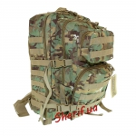 Рюкзак штурмовой MIL-TEC Assault W/D-Arid тактический 36л, 14002256